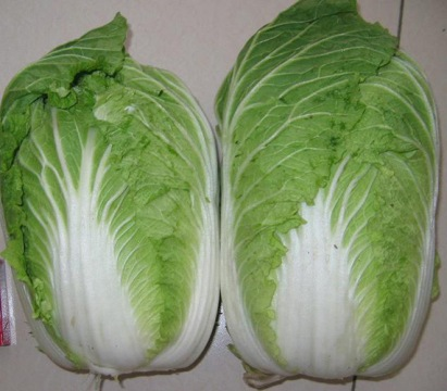 Cabbage clipart petchay Widely is vegetable high (Chinese