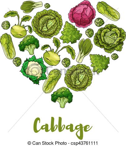 Cabbage clipart vege Shape heart csp43761111 vegetable Art