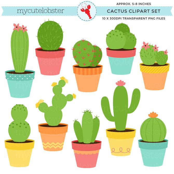 Drawn cactus flat design Set cactuses this set of