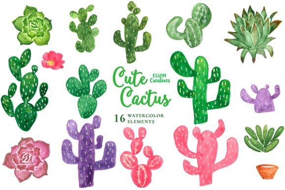 Background clipart cactus #13