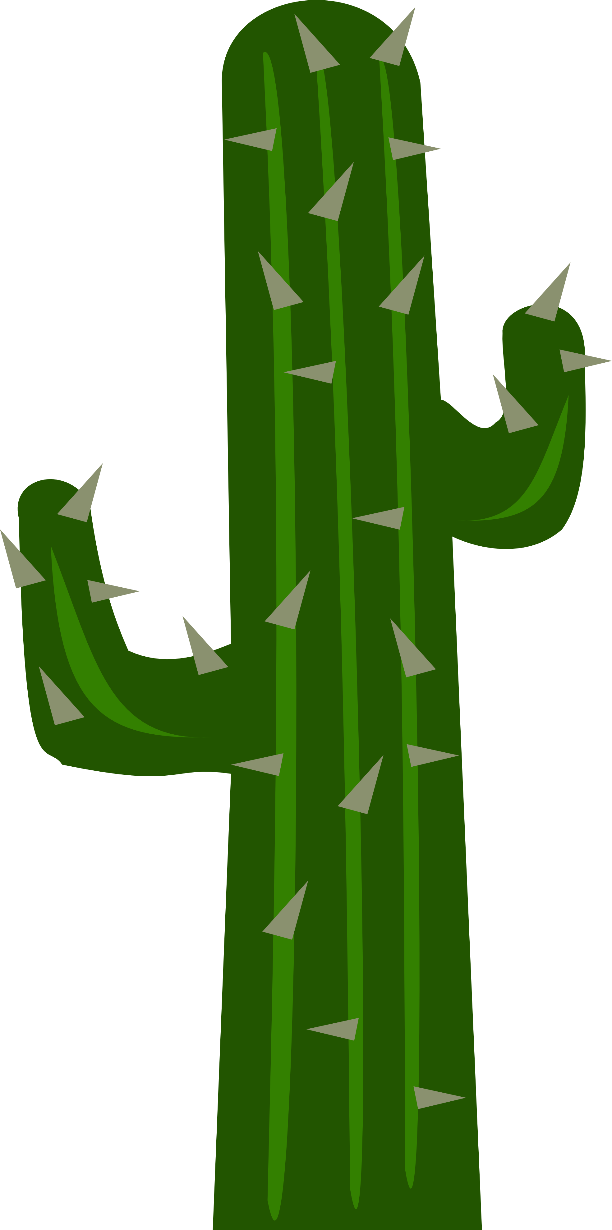 Background clipart cactus #5
