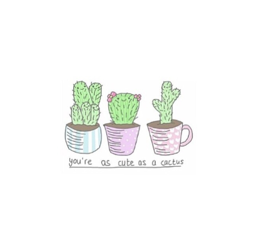 Drawn converse quote Tumblr Google Cactus Search