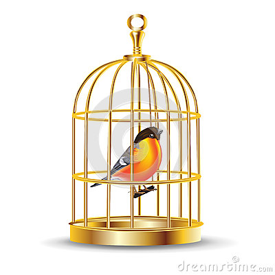 Cage clipart gold Stock cartoon With  Royalty