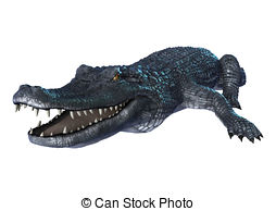 Caiman clipart Stock alligator clip  and