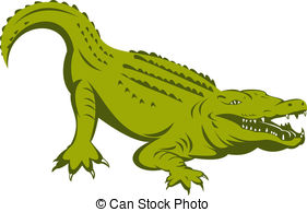 Caiman clipart Download #1 Caiman drawings clipart