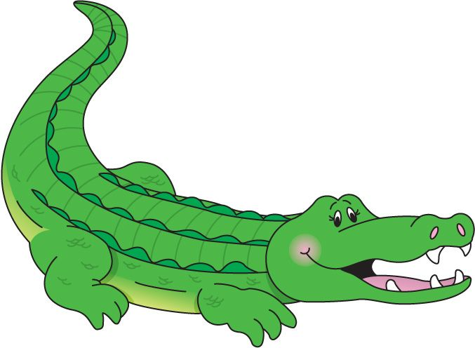 Alligator clipart jungle Clipart Caiman drawings clipart Caiman