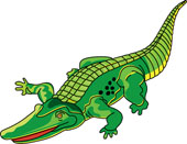 Caiman clipart Results Clipart Pictures Size: From: