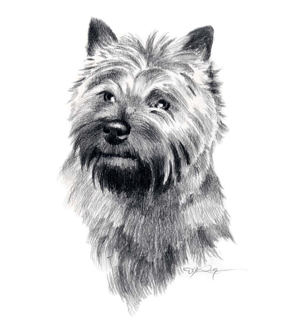 Cairn Terrier clipart Like Artist Rogers this Signed