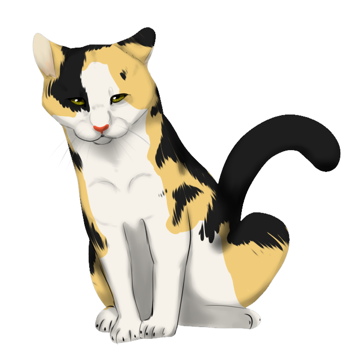 Calico Cat clipart On Pin Drawings Calico Cartoon