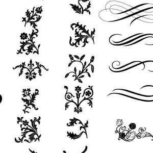 Calligraphy clipart curly cue Ornate Floral and Swirly 0