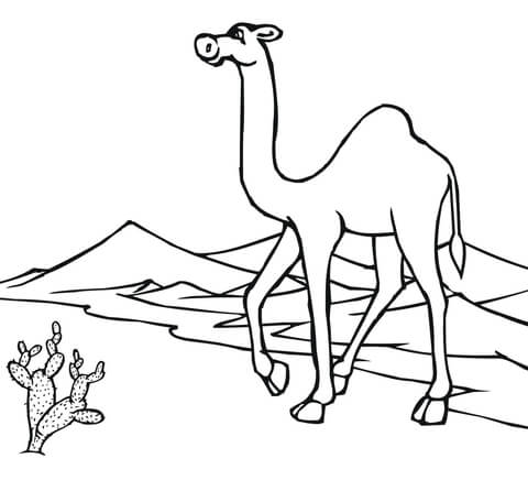 Camel Caravan clipart camel riding Version Free Camel Through page