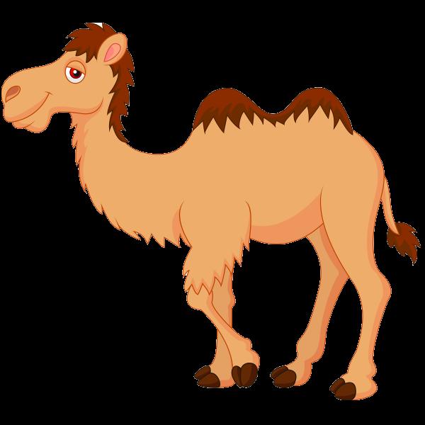 Drawn camel children's Clipart Cliparting clip art Camel