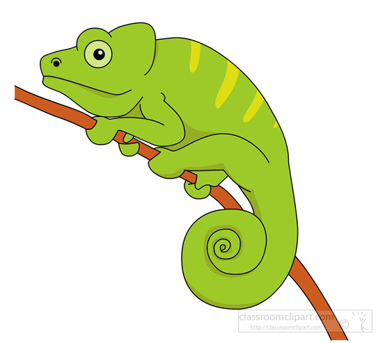 Cameleon clipart #3