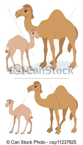 Drawn camel children's Vector and his Camels