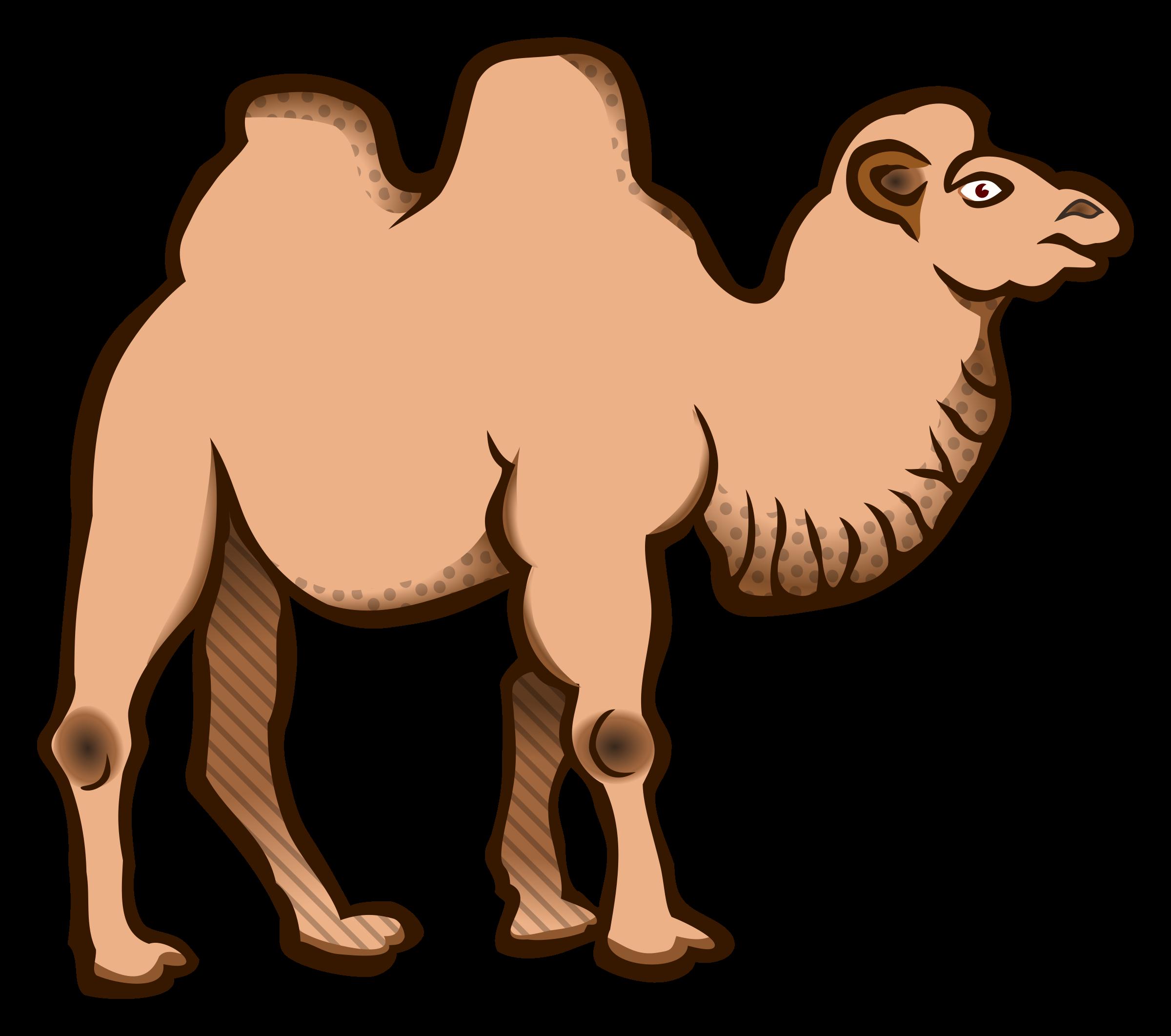 Camel clipart big animal (PNG) Clipart coloured BIG IMAGE