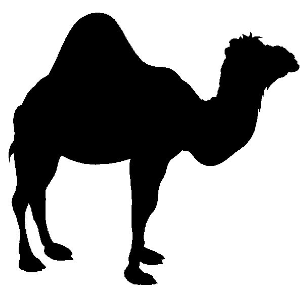 Camel clipart big animal #CRICUT #CRICUTEXPLORE IMAGES: on images