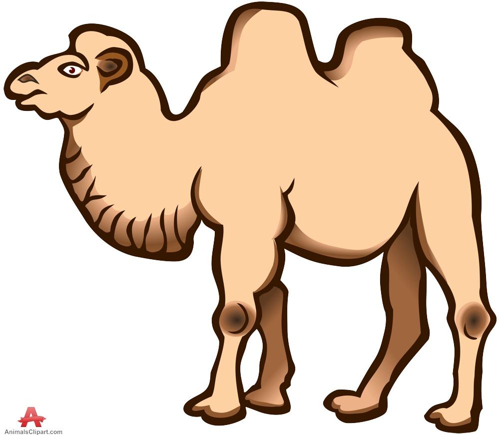 Animl clipart camel Free Clipart Large Animals Animals