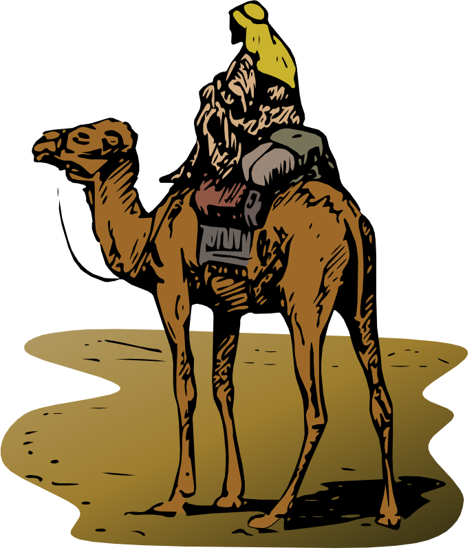 Camel clipart big animal (PNG) Clipart with MEDIUM IMAGE