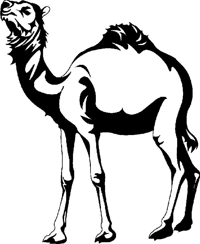 Camel Caravan clipart black and white Camel And Black Clipart Panda