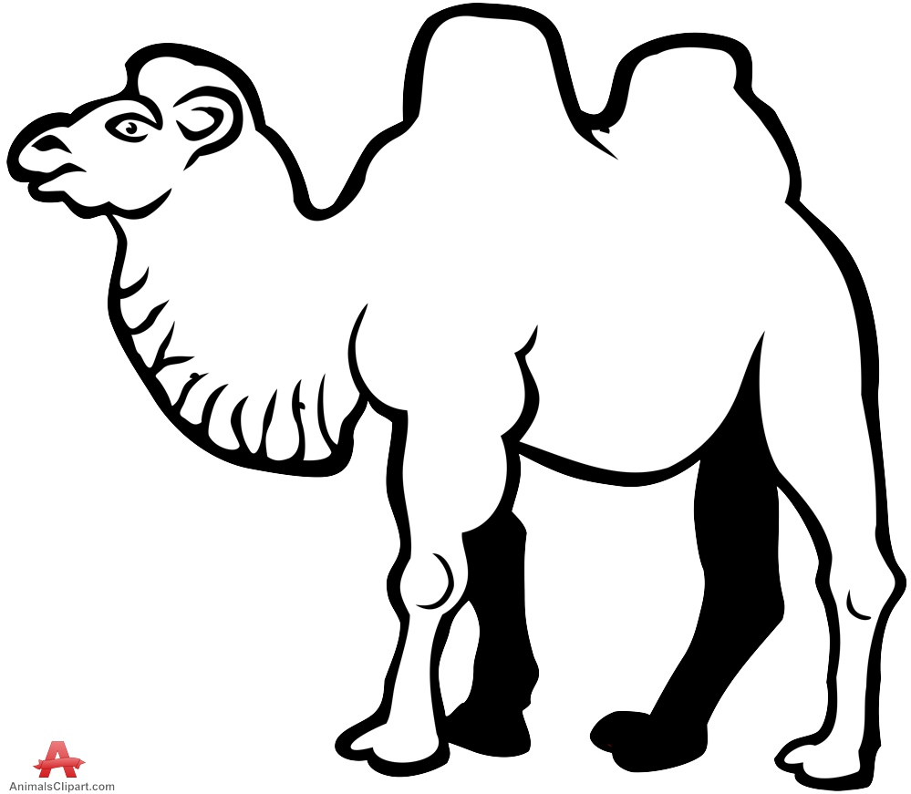 Drawn camels head Free in Drawing Download Camel