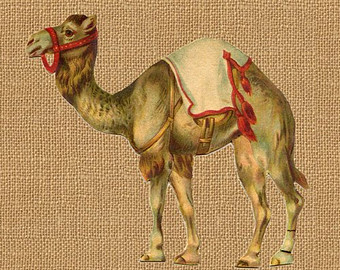 Camel clipart circus Full Digital Etsy Download Clip