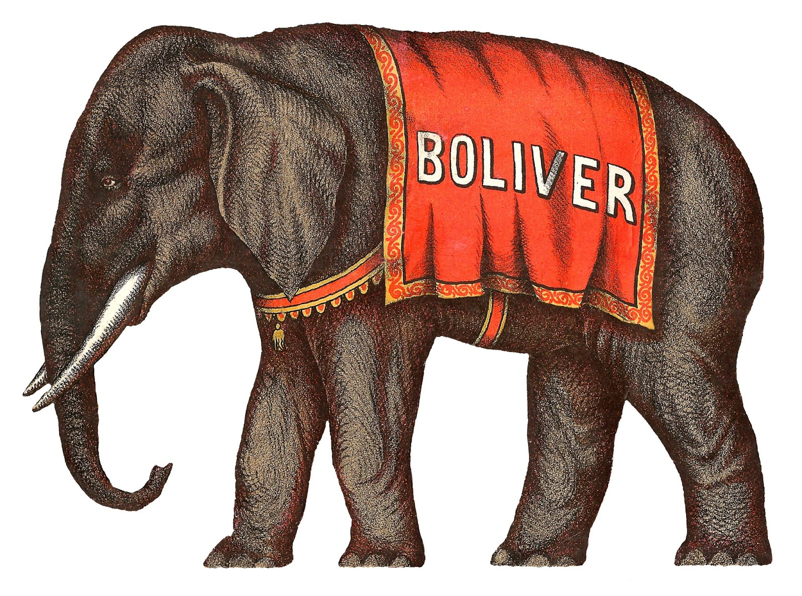 Asian Elephant clipart circus elephant Antique Camel Antique Elephant art