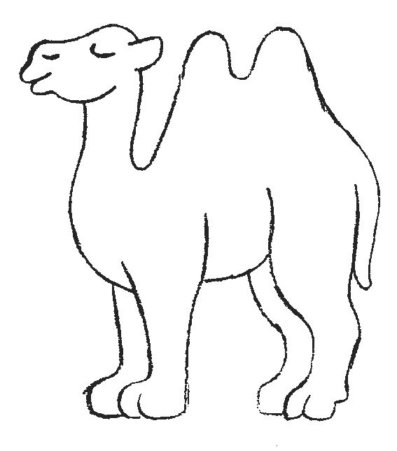 Camel clipart coloring book Coloring best a on 459