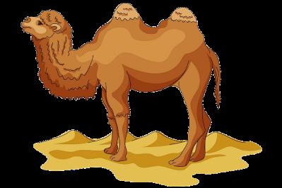 Camel clipart cartoon Free Camel Camel Pictures Art