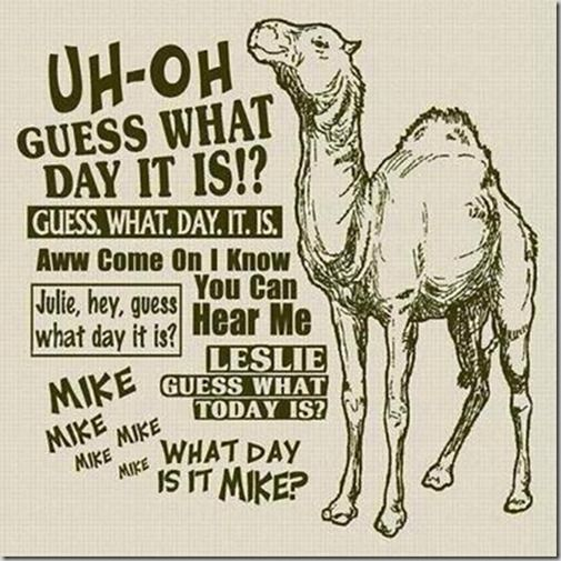Camel clipart geico On Day Caleb 75 day