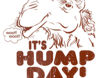 Drawn camel hump day camel Clipart Geico Hump Day Geico