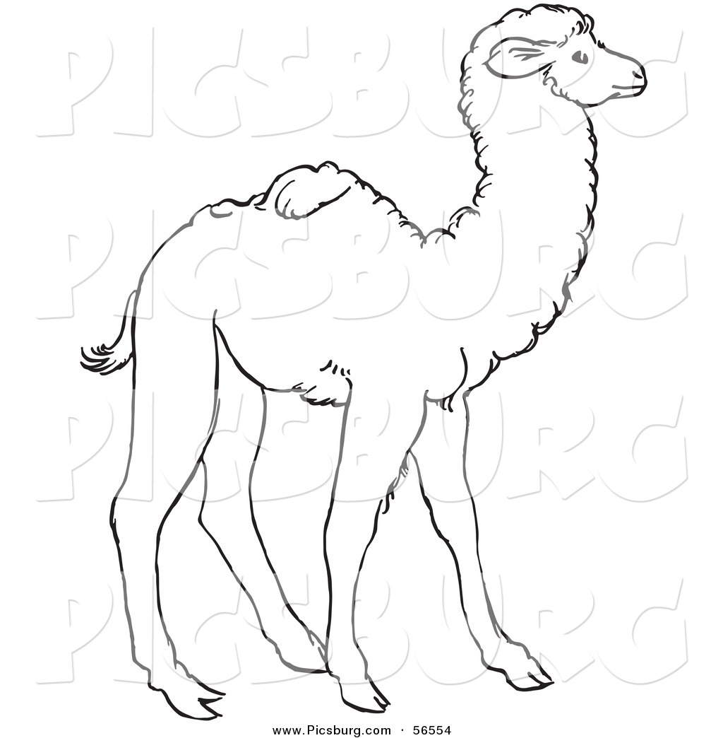 Camel clipart arab man White and Line Clip Art