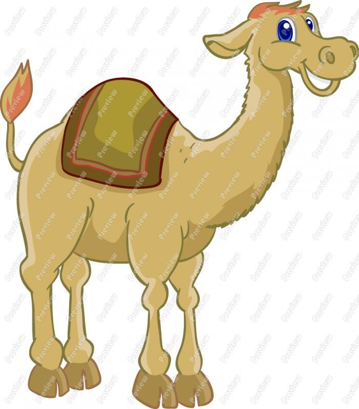 Animl clipart camel  Art Camel Clip Cartoon