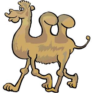 Camels clipart morocco Clip Cliparts Download Art Art