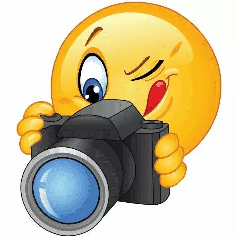 Camera clipart funny And photo images Hair
