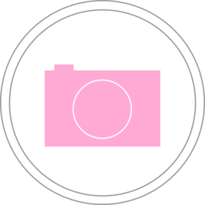 Photography clipart pink camera Icon  art clip Clker