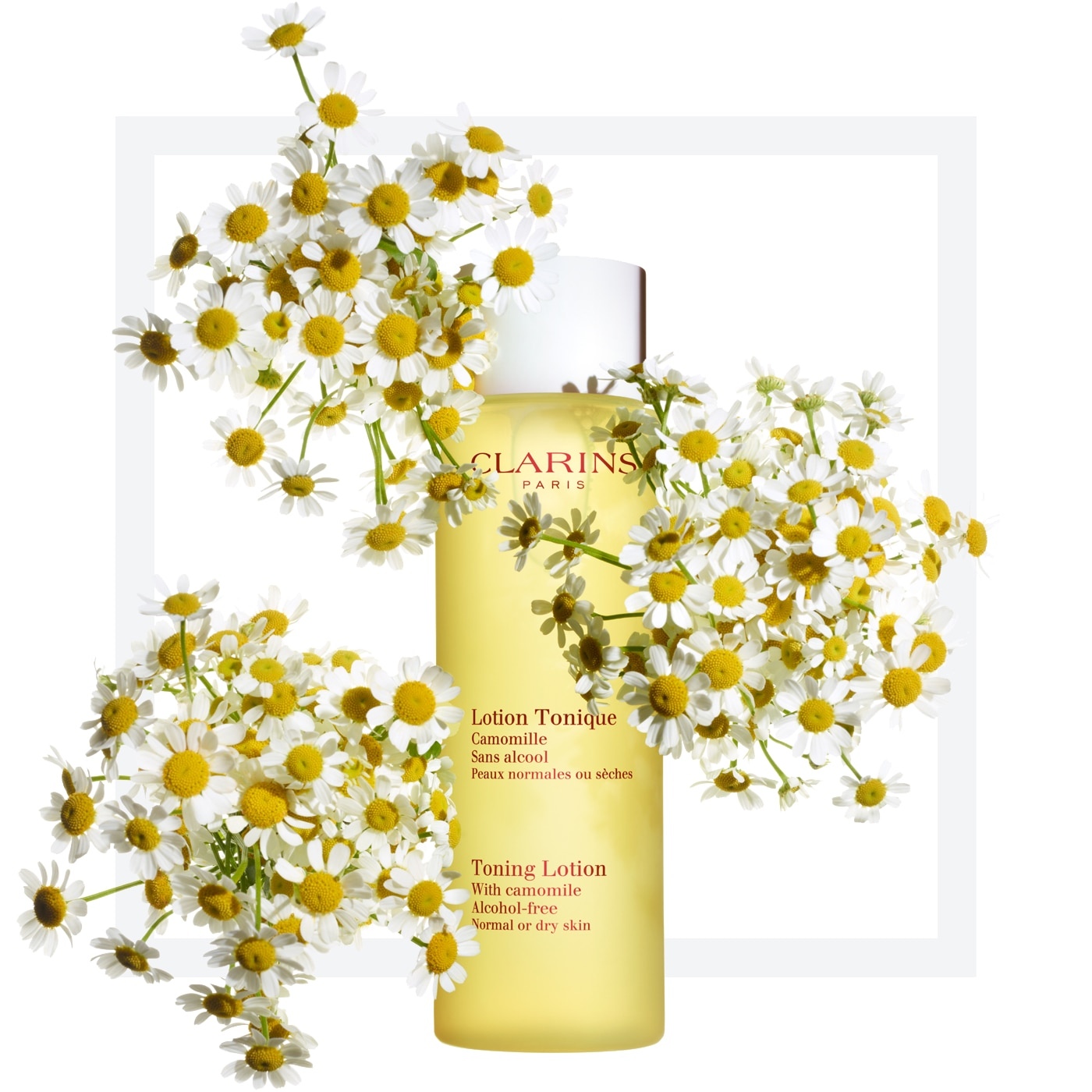 Camomile clipart clean air With oily skin Clarins Toning