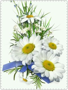 Camomile clipart clean air  PNG Floral leaves branches