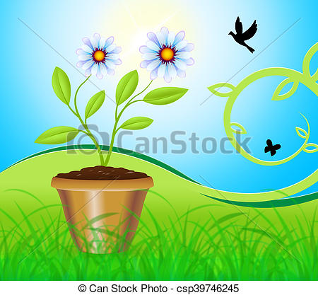 Camomile clipart potted plant Means Plant  Gardening Potted