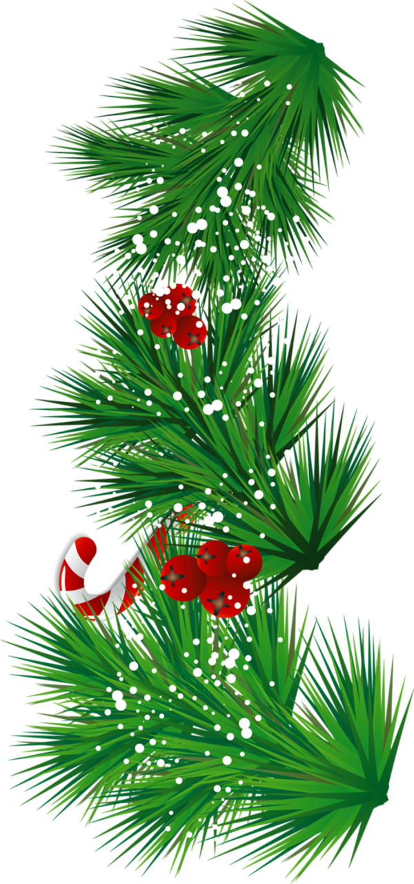 Candy Cane clipart christmas mistletoe Cane and View Transparent