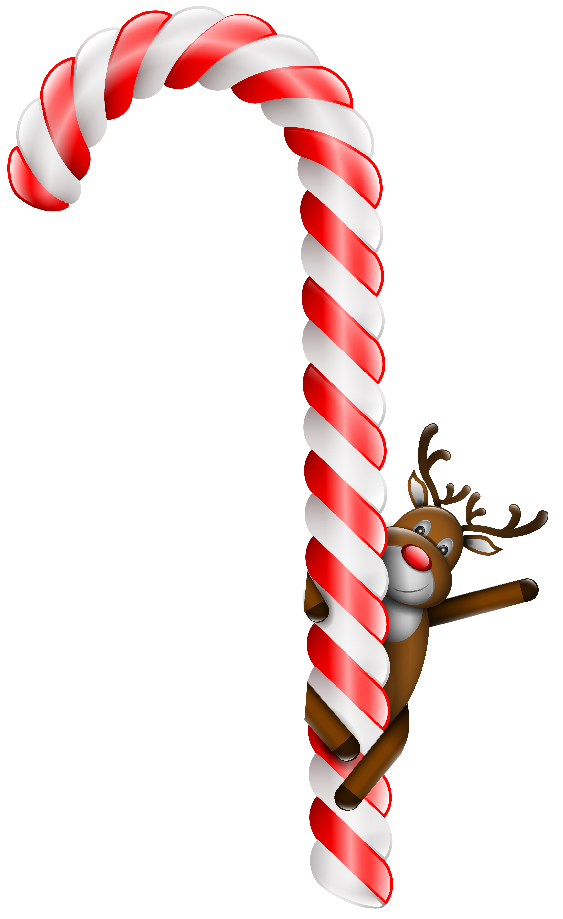 Candy Cane clipart transparent background Christmas  Clipart Large with