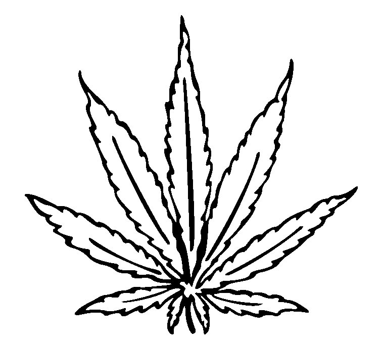 Drawn pot plant weed line Cannabis at Leaf clip