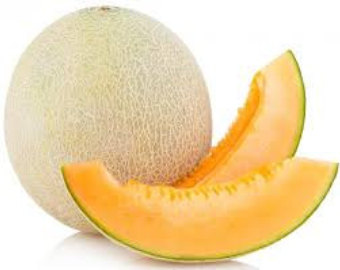 Honeydew clipart slice Your garden fruit in Etsy