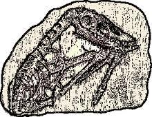 Caol clipart sedimentary rock Sometimes mrsgentrysclassroomrocks another site Just