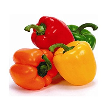Capsicum clipart colour Amazon each) L&G 20 Capsicum