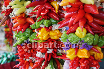 Capsicum clipart colour Spanish vegetable tasty textures taste