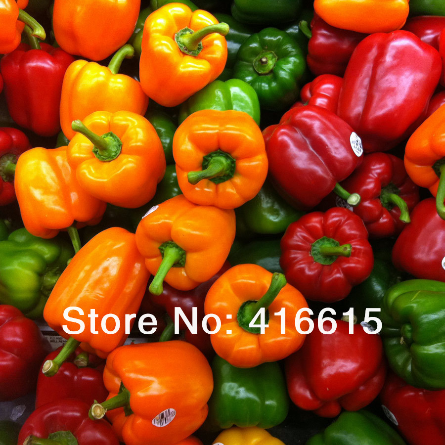 Capsicum clipart colour Prices Price color SWEET /
