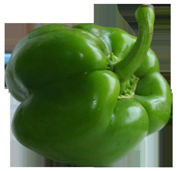 Pepper clipart green vegetable Etsy art Vegetables vegetables info