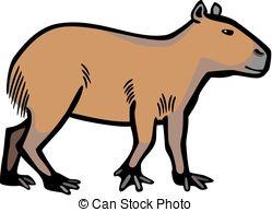 Capybara clipart Art the color rodent vector