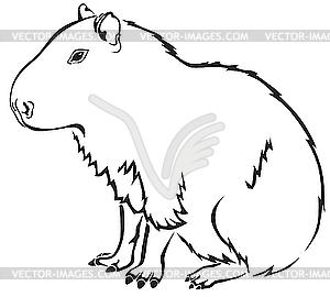 Capybara clipart #1 #3 Capybara Clipart clipart