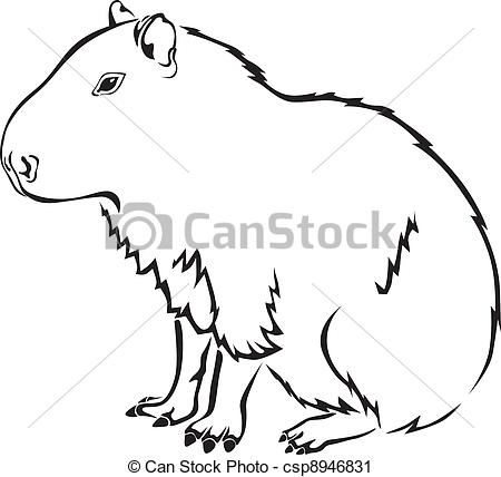Drawn rodent basic Illustrations capybara isolated capybara rodent